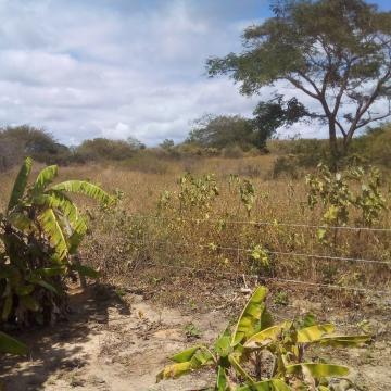 Terreno com excelente localização em Araripina.  A área possui 18,70 Hectares, localizada em Sítio Patos - Fazenda Santa Cruz.  Agende sua visita!
